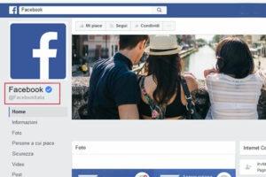 Facebook reputazione politica